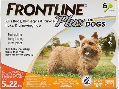 How Frontline Plus Works on Pets to Kill Fleas and Ticks?