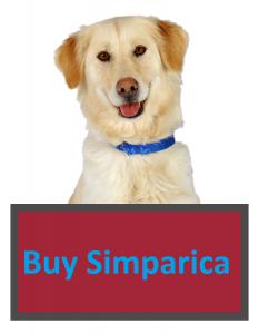 Buy Simparica For Dogs