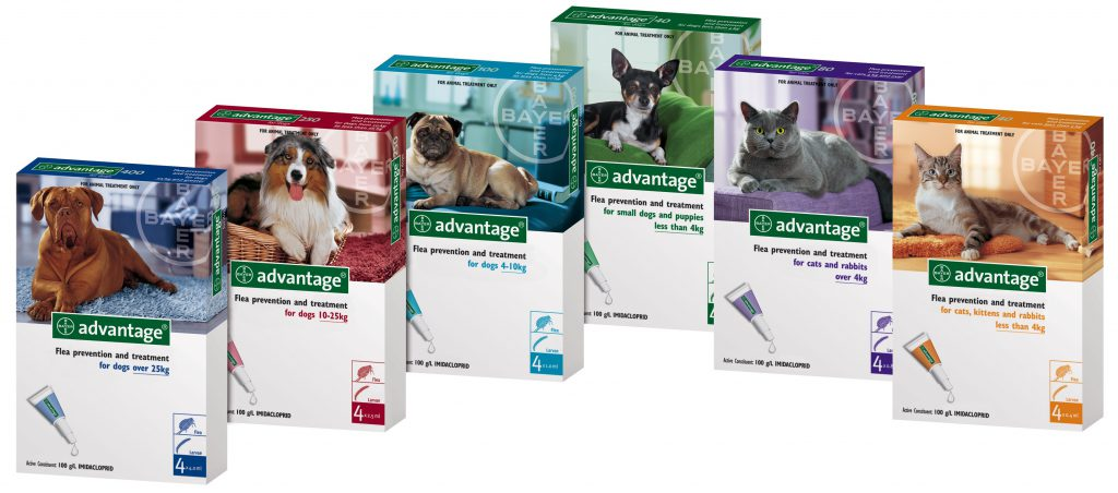 Advantage For Dogs & Cats
