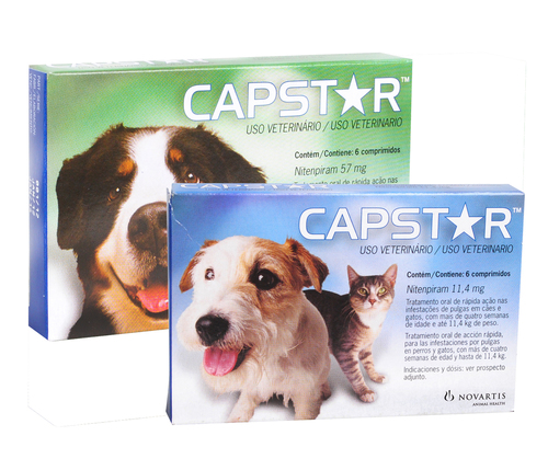 Capstar For Dogs & Cats