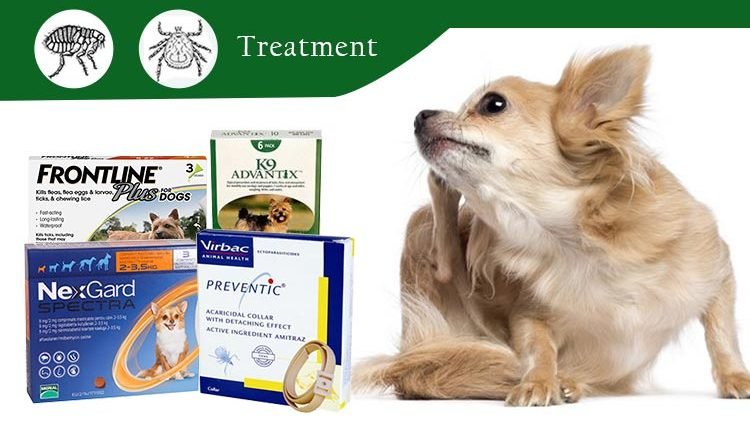 Flea-and-Tick-Treatment-CanadaPetCare