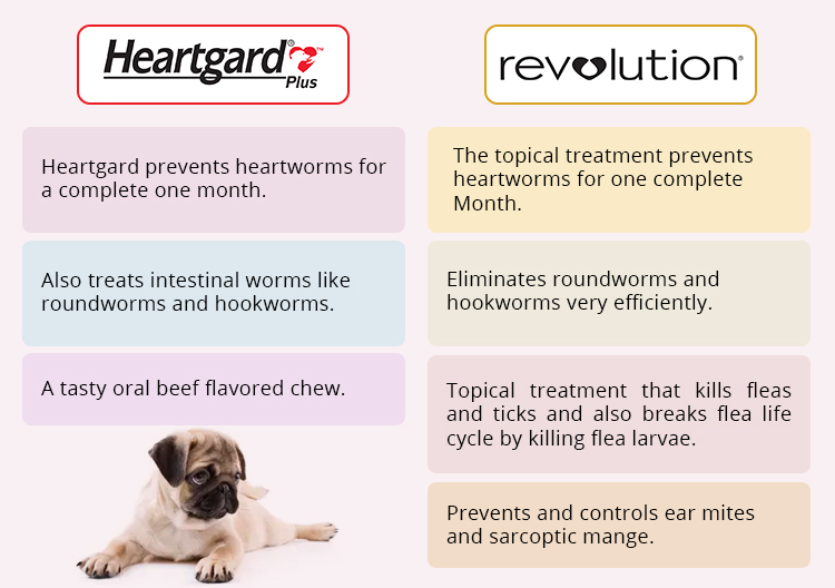heartgard plus chewables vs revolution