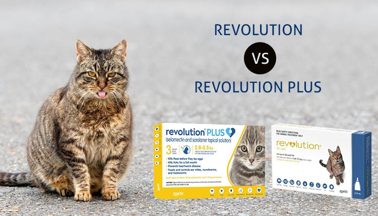 Revolution Vs. Revolution Plus