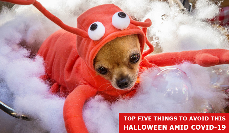 5 Things To Avoid This Halloween Amid Covid-19
