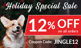 Holiday Special Sale