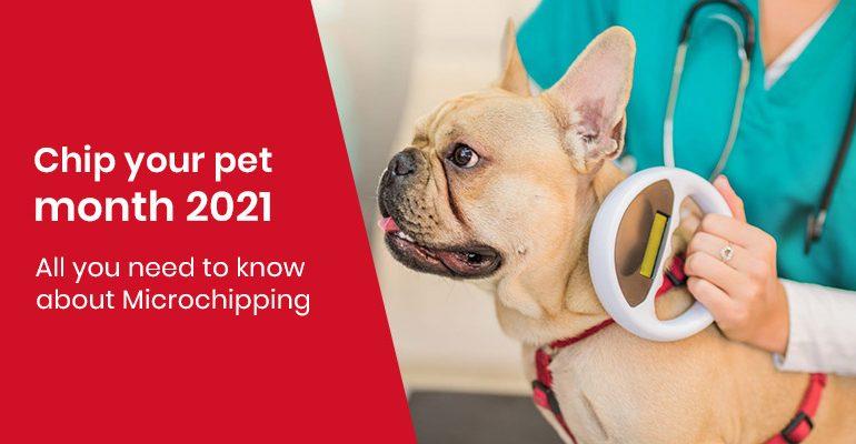 Chip your pet month